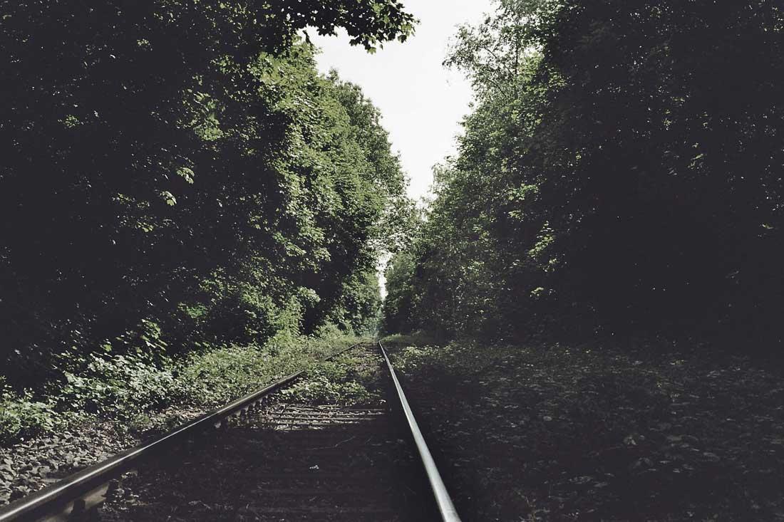 krefeld railway track Forest